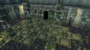 Tarn's Lair entrance