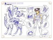 Pegasus Cloth1design