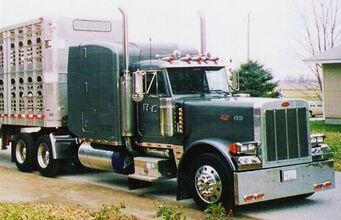Peterliner - Peterbilt 379 in real life