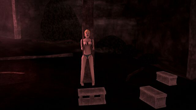File:Cemetery Sex Cavern - blow up doll standing and cinderblocks.jpg
