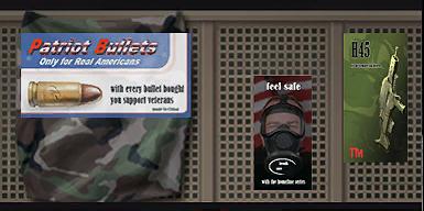 File:Friendly Fire 037 gunstore bar d gl.png