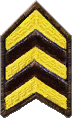 Stilwater Police Department chevrons