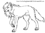 Long-haired wolf