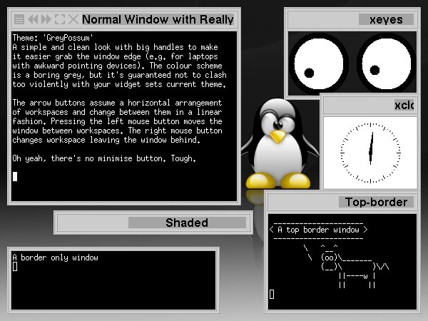 File:GreyPossum.jpg
