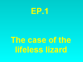 The Wrath Of The Lifeless Lizard