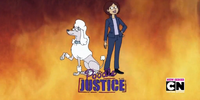 Poodle Justice