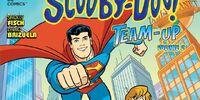 Scooby-Doo! Team-Up: Volume 2