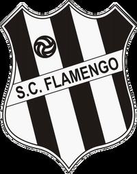 Sport Club Flamengo
