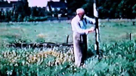Kunstenaar August Gillé (1892-1989) - Filmfragment 3 - Gillé hijst de Witte Vlag (1980)