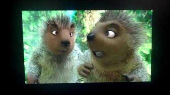 Opening to Madagascar 2005 DVD