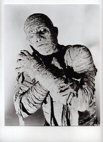 10101643A~Boris-Karloff-The-Mummy-Posters