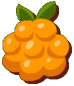 File:Cloudberry.png