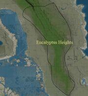 EucalyptusHeights