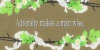 Adversity Makes a Man Wise