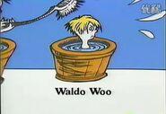 Who also washes waldo woo