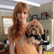 Bella-thorne-Kingston-orange-fur