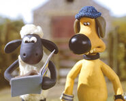 Shaun and Bitzer1