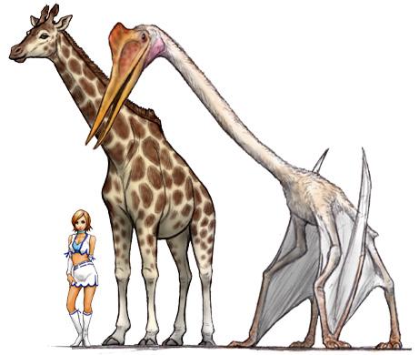 Hatzegopteryx Size Dino Dino no Mi, Model...