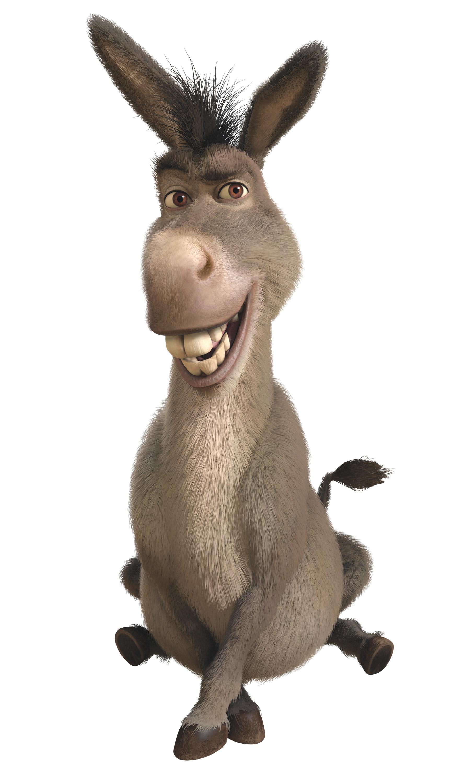 Donkey wikishrek fandom powered by wikia
