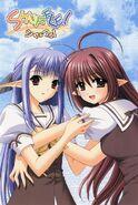 Nerine and sia
