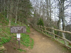 800px-Appalachian Trail at Newfound Gap.JPG