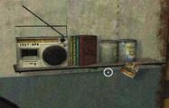 RadioShell