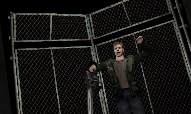 File:James meets a fence.JPG