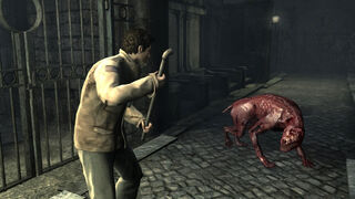 Alex from Silent Hill fighting off a feral