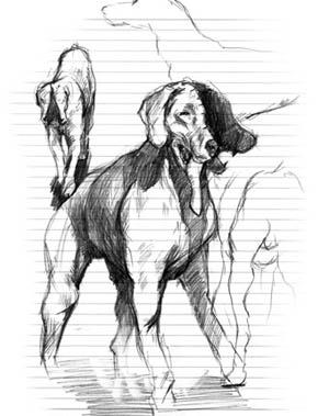 File:Doubleheaddog.jpg