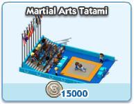 Martial Arts Tatami