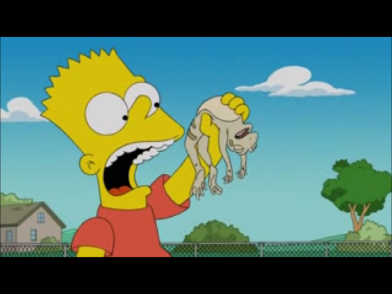 File:Bart about to eat the frog.png