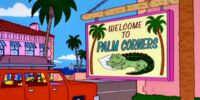 Palm Corners