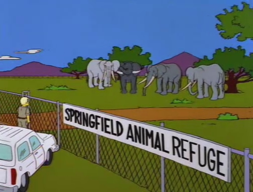 File:Bart Gets an Elephant 105.JPG