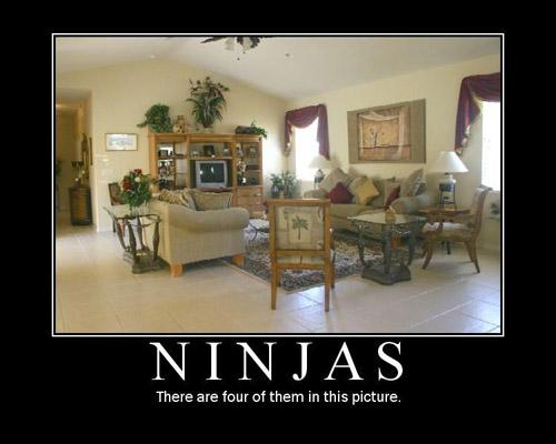 File:Ninjas (What else dude).jpg