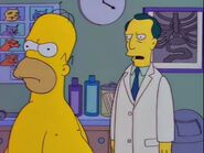 Homerpalooza 68