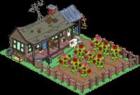 Cletusfarm RoseBush