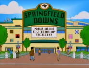 Springfield downs