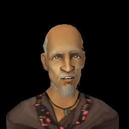 File:Wise Old Man.png