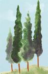 Painting medium 7-4