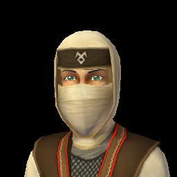 File:Ninja 2.png