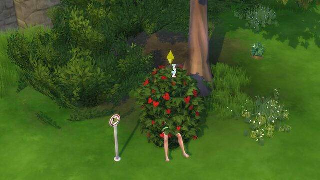 File:Get together-sim sleeping in bush.jpg