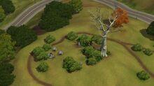 Appaloosapark