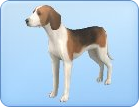 File:Breed-l07.png