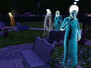 Riverview-graveyard.jpg