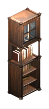 File:MagiCo bookshelf.png