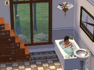 Sims2BathWatcher