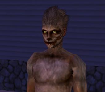 File:Werewolfsim.png