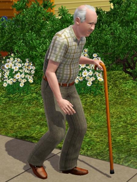 Walking Cane The Sims Wiki Fandom Powered By Wikia