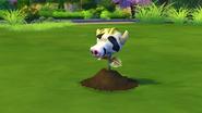 Baby Cowplant