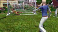 Festival summer - soccer goal 2